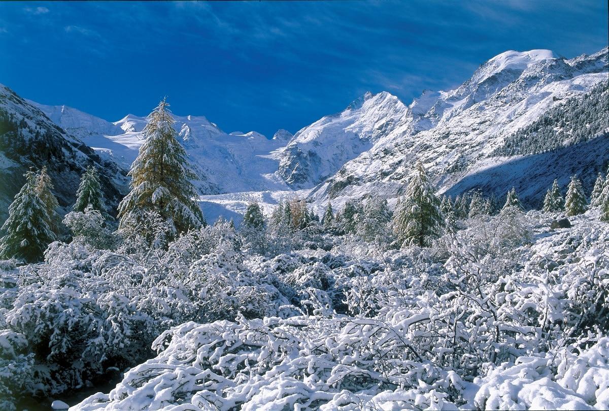 Pizzo Bernina