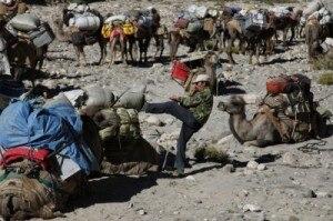 GI,Trekking con i cammelli nel selvaggio nord del Karakorum