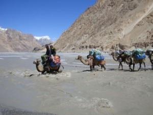 Attraversamento del fiume sui cammelli