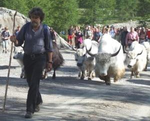 Messner guida la transumanza degli yak
