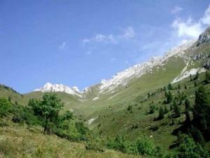 Panorama Latemar (Cai Pedrazzo)