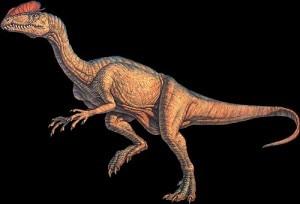 Un dilophosaurus