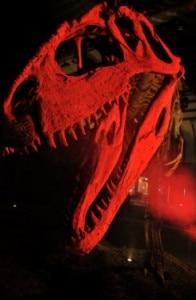 Dinosauri della Patagonia