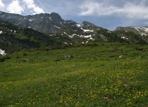 Il Parco Naturale Orsiera Rocciavrè in primavera (Photo Parks.it)