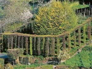 Un roccolo (Photo L'Eco di Bergamo)