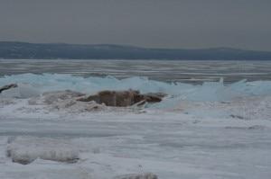 Lake Superior ghiacciato