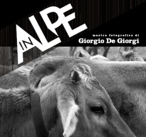 Locandina della mostra 'In Alpe'