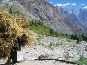 Alluvione ai piedi del Karakorum - EvK2Cnr sostiene Aga Kahn Rural Support Programme nella raccolta fondi per dare un tetto agli sfollati