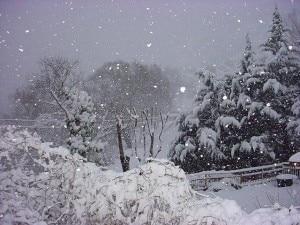 Neve (Photo courtesy nuovosoldo.it)