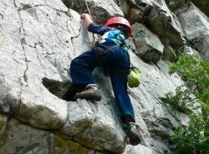Bimbo climber (Photo courtesy trehugger.com)
