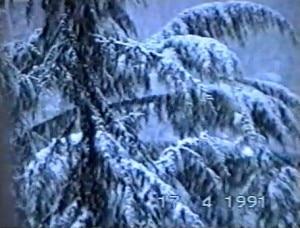 Neve a Milano 17 aprile 1991 (photo courtesy 3bmeteo.com)