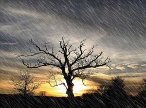 Meteo dinamico (Photo courtesy www.3bmeteo.com)