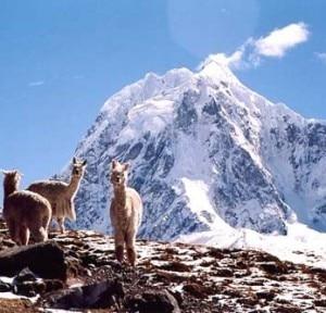 Il monte Ausangate (Photo courtesy of www.enjoytravel.us)