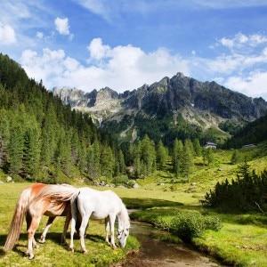 Uno dei paesaggi della rassegna Trekking con l'autore (Photo Graziano Panfili)
