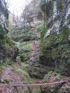 I boschi della Valsorda (Photo courtesy of www.maranovalpolicella.it)