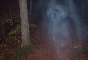 Un fantasma che vaga per i boschi? (Photo courtesy of ghostpicturesreal.com)