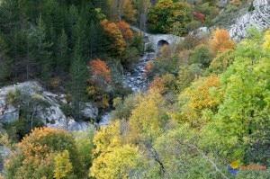 Un tratto del torrente Petit Buëch nel territorio di Rabou (Photo courtesy of www.visoflora.com)