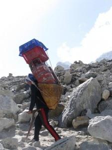 Sherpa (Photo tripwow.tripadvisor.com)