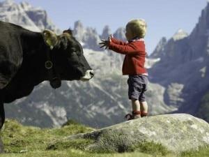 Bambini e montagna (Photo courtesy campigliodolomiti.it)