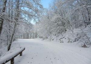 Neve nella zona aretina di Pratomagno (Photo courtesy of www.arezzometeo.com)
