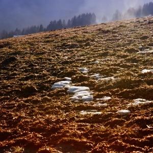 Caldo (Photo courtesy cicalarauca.wordpress.com)
