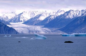 Kaparoqtalik Glacier, Canada