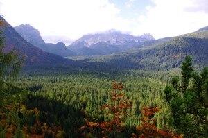 Photo of Dolomiti, un parco letterario nella foresta di Dino Buzzati