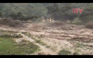 Alluvione-ai-piedi-del-Rwenzori-photo-courtesy-ntvuganda.co_.ug_-300x187.jpg