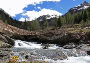 """Photo of Primavera lenta sulle montagne dove si correrà la """"4 luglio"""""""
