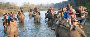 Tourists enjoying elephant safari at Chitwan National Park. Photo: turrettours.com