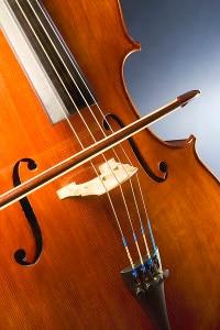 Particolare di un violoncello (Photo Michael Maggs courtesy of Wikimedia Commons)