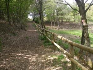 Un tratto del sentiero per non vedenti di Carrega Ligure (Photo courtesy of www.provincia.alessandria.gov.it)