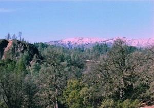 Parte della Mendocino National Forest nella California del Nord (Photo Marcia Wright courtesy of Wikimedia Commons)