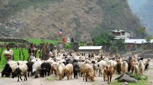 Photo: www.project-himalaya.com.