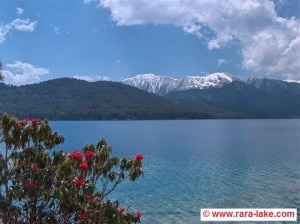 A beautiful scene of Rara Lake in Nepal. Tourists from across the globe visit Nepal to enjoy natural beauties as the lake and the Himalayas. Photo: File photo/agency