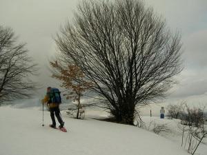 Ciaspolatore con racchette da neve e batoncini (Photo courtesy of Wikimedia Commons)