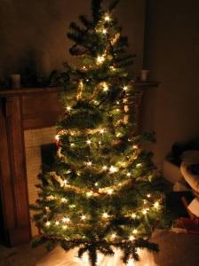 Christmas_tree_at_night