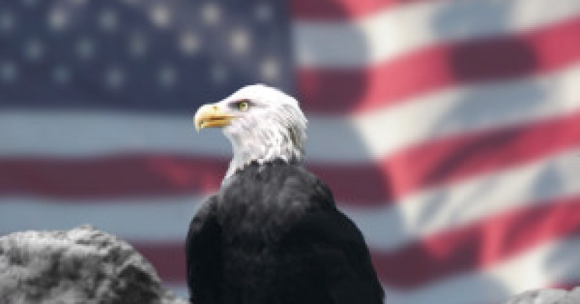 Eagle_and_American_Flag_by_Bubbels-300x225.jpg