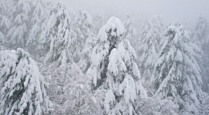 Photo of Alpi: in arrivo neve copiosa oltre i mille metri. Nuovi fiocchi nel weekend