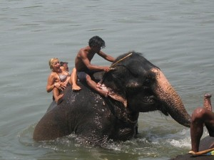 In this file photo foreigner tourists seemed enjoying elephant riding. Source: rainbowsafariresort.com.