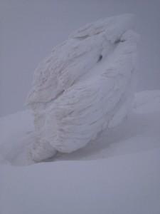 Photo of Grignone, il rifugio Brioschi sommerso dalla neve