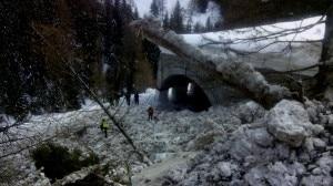 La valanga caduta al Passo Giau: sulla sede stradale sono stati trasportati neve, piante e materiale (Photo courtesy of Cnsas Veneto)