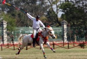 Horse-Festival-300x206.jpg