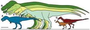 Photo of Scoperta al Polo Nord una nuova specie di dinosauro