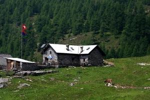 800px-Alpe_Salei-300x199.jpg