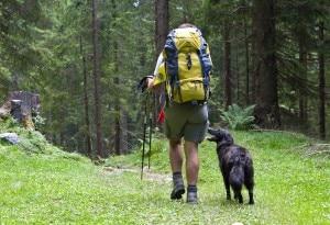 Photo of Cani nei rifugi alpini? Il vademecum del Cai