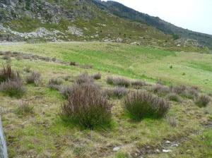 Carriere de L'Arriege Trimouns, un'area di miniera ripristinata nei Pirenei (Foto Matteo Crottogini)