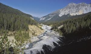 Photo of Il Parco nazionale svizzero compie 100 anni, è il più antico delle Alpi