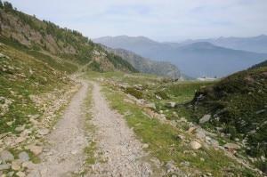 Uno dei sentieri della rete escursionistica della Provincia di Torino situato nella zona della Conca Cialancia (Photo courtesy of Provincia di Torino)