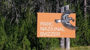Parco Nazionale Svizzero (Photo courtesy of Hansueli Krapf/Wikipedia.org)